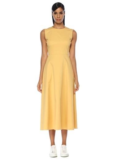 Theory Elbise Sarı